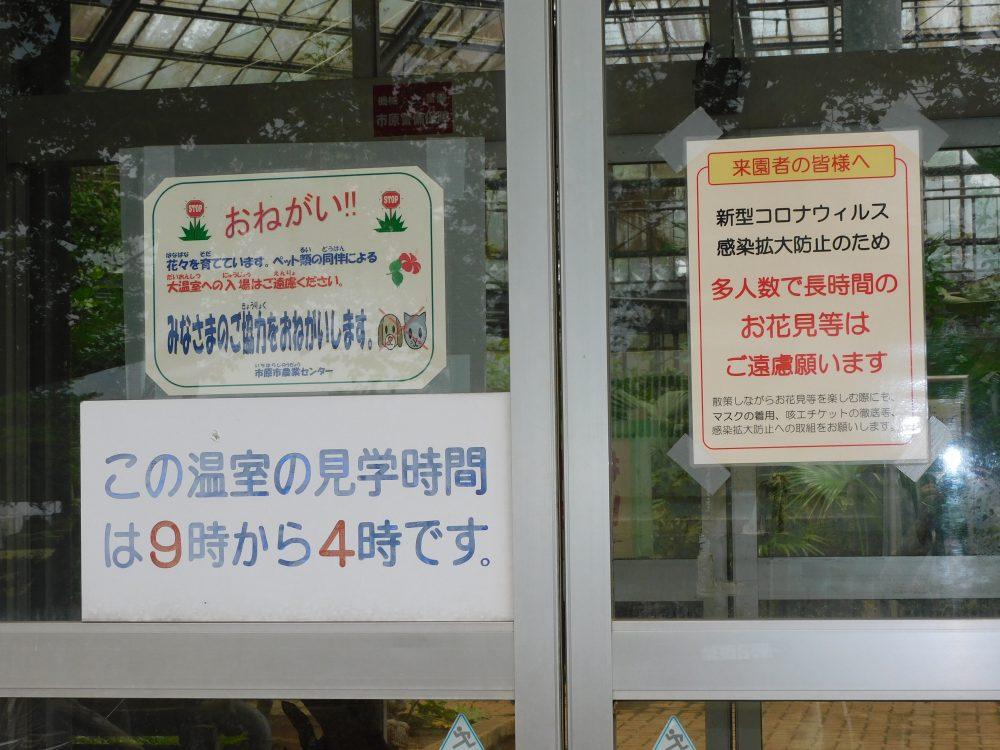植物園(展示大温室)の扉