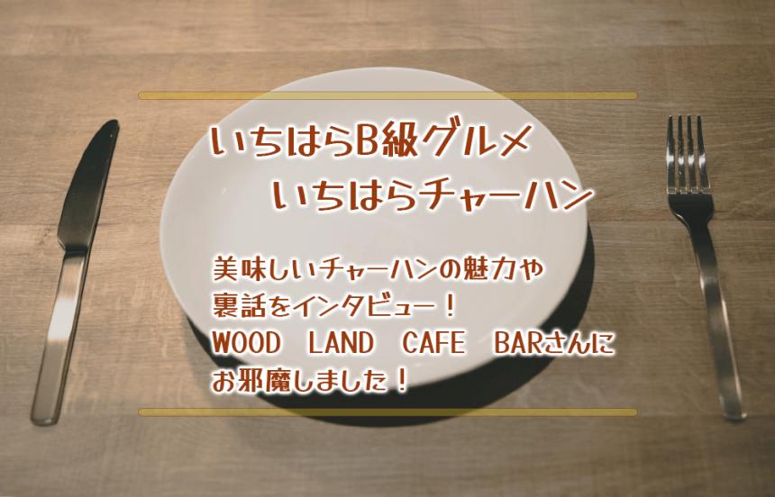 【いちはらB級グルメ】美味しいチャーハンの魅力や裏話をインタビュー!WOOD LAND CAFE BARさんにお邪魔しました!